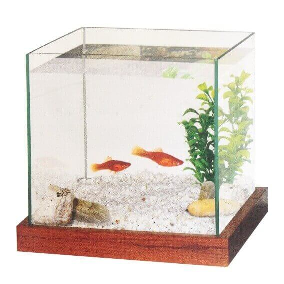 Aquarium kit with gravel and plants_1
