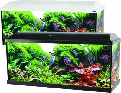 Kit aquarium ISEO 100 cm 106L
