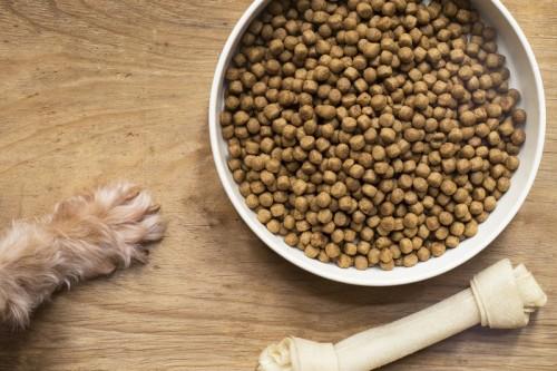 Les glucides dans les croquettes pour chien et chat, c'est quoi ?