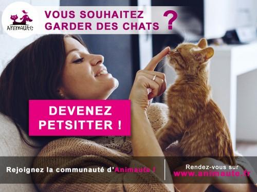 Animaute : rencontre avec une des plus grandes plateformes de pet-sitting en France