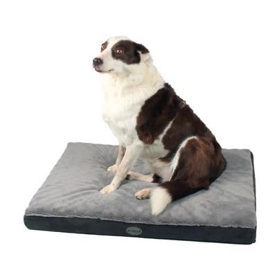 Feria a testé le matelas pour chien à mémoire de forme Nixon de Zolia !