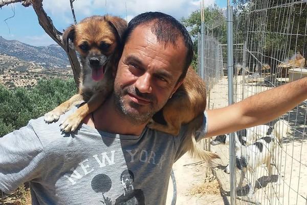 Theoklitos Proestakis : il quitte tout pour secourir les animaux des rues en Grèce