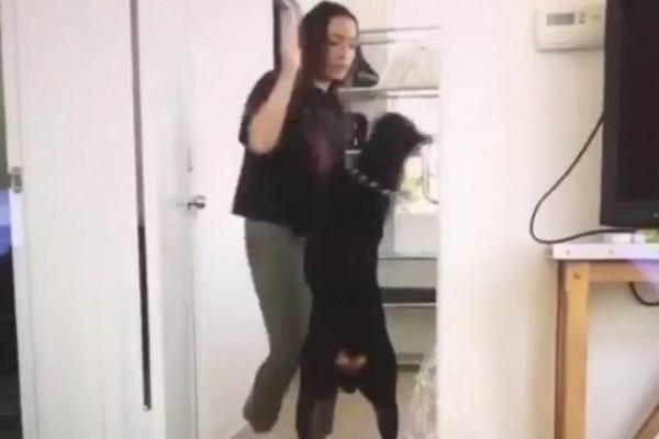 Une Youtubeuse publie par erreur une vidéo dans laquelle elle frappe son chien