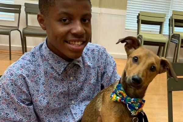 Sir Darius Brown : A 13 ans, il crée des noeuds de papillon pour faire adopter des chiens de refuge