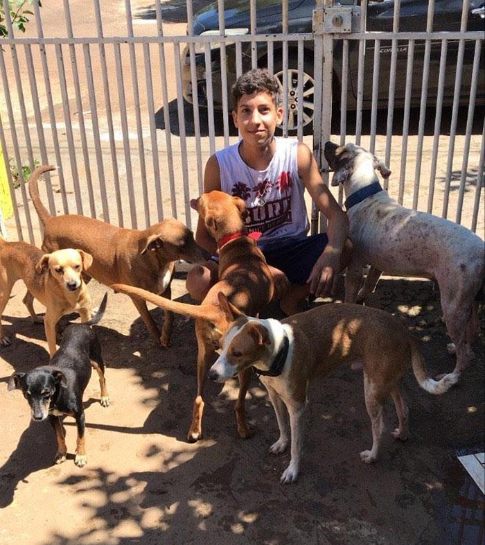 Eduardo Caiodado : un sauveur à la rescousse des animaux abandonnés
