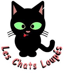 Les Chats Loupés : une association qui recueille et soigne les chats errants pour adoption