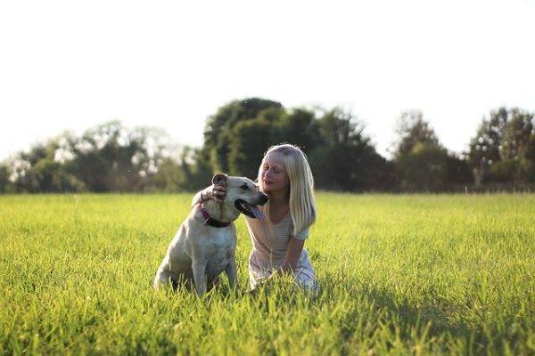 7 Médecines Naturelles pour animaux