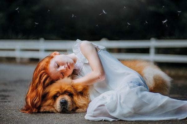 La zoothérapie : qu'est-ce-que la médiation par l'animal ?