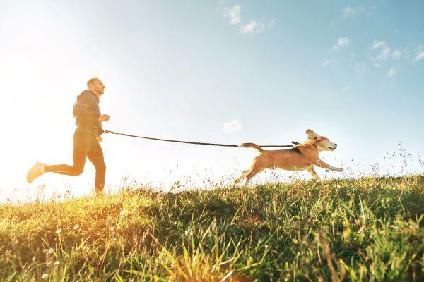Canicross : le sport de l'été qui a du chien !