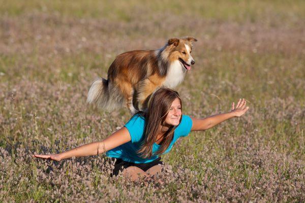 Dancing Dog : comment bien danser avec son chien ?
