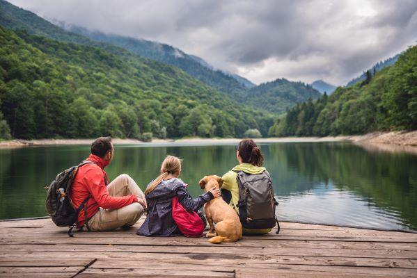 Partir en Vacances avec son Chien : les 10 règles Dog Friendly