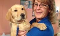 Dresseur de chien d'aveugle, un métier qui transforme des vies