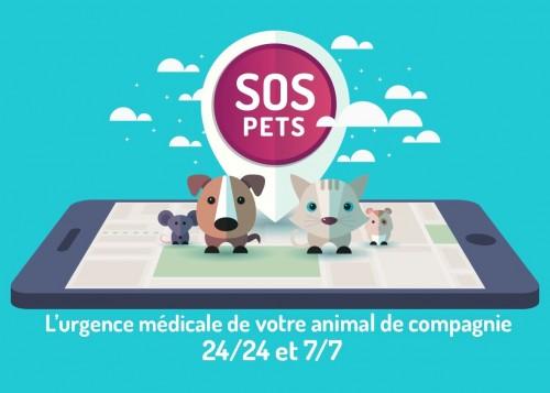 Interview d'Olivia Augereau, co-fondatrice de SOS PETS