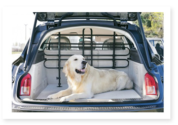 cage de transport chien transport en voiture et v lo. Black Bedroom Furniture Sets. Home Design Ideas