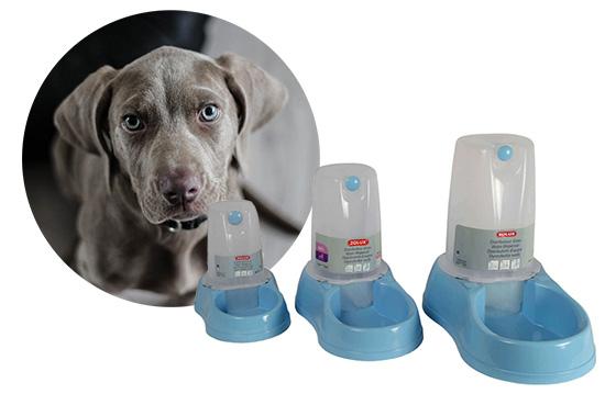 distributeur de croquettes pour chien. Black Bedroom Furniture Sets. Home Design Ideas