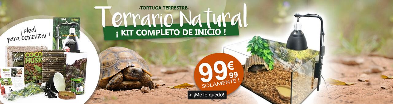 Terrario Natural para tortuga terrestre