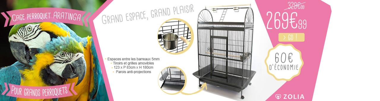 Cage aratinga