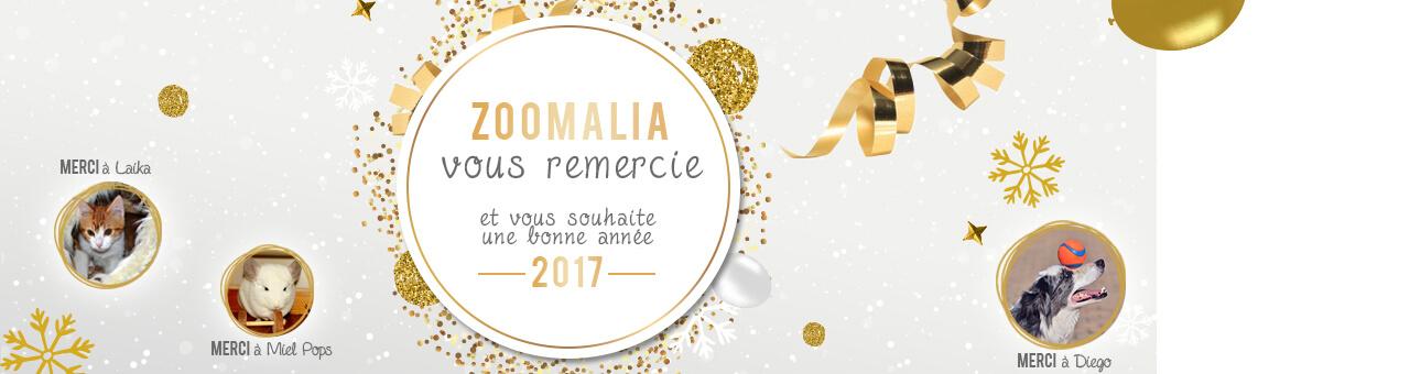 Remerciements et bonne année