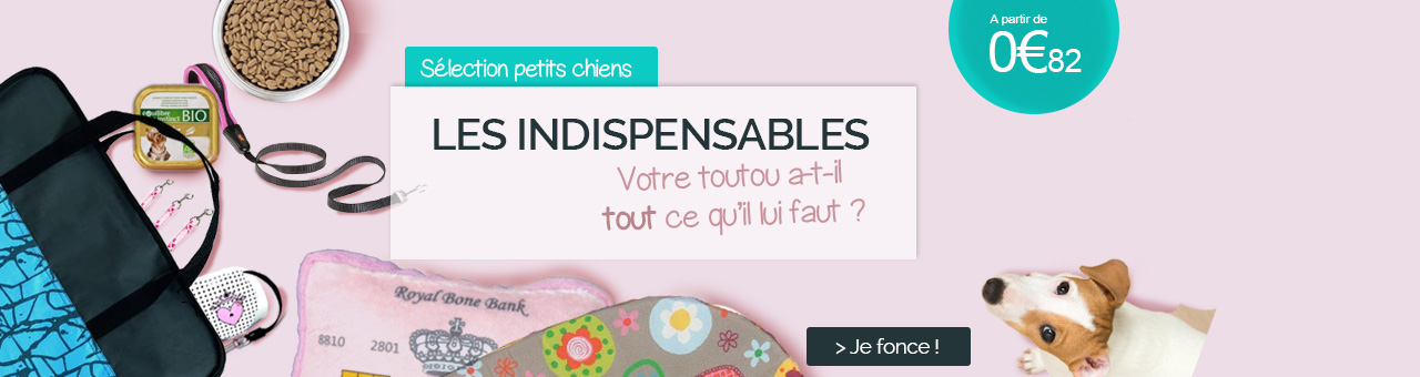 Indispensables petits chiens