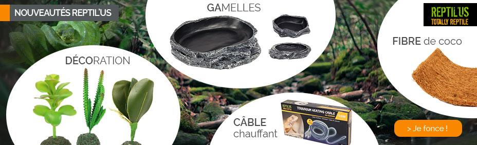 accessoires pour reptiles