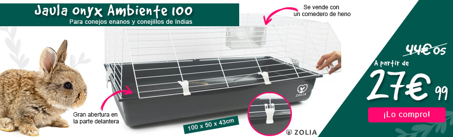 Cage onyx ambiente