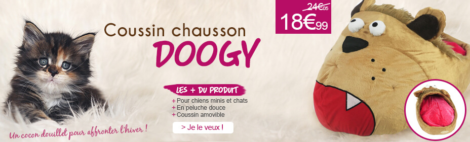 Coussin chausson Doogy