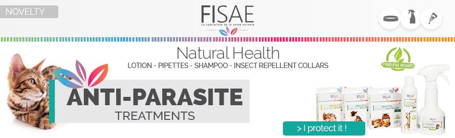 Fisae