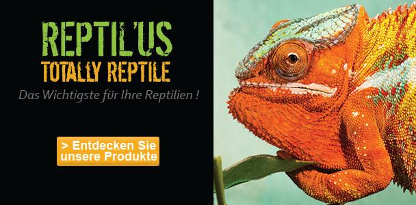 Reptil'Us
