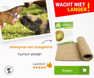 Online Dierenwinkel Accessoires En Voeding Dieren