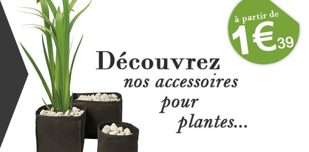 Accessoires pour plantes