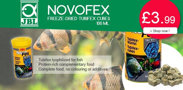 JBL NovoFex Tubifex Cubes