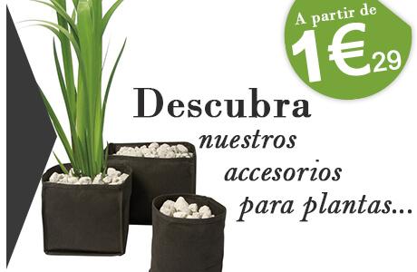 accesorios para plantas precios mini