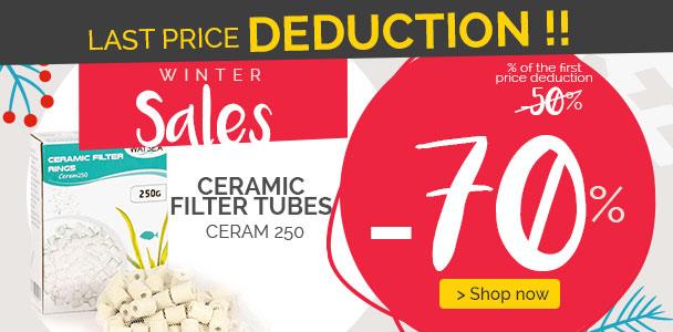 SALES : Bargain price