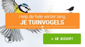 Help de hele winter lang je Tuinvogels !