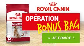 Bons plans Royal Canin