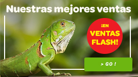 Best sellers reptiles
