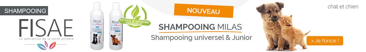 NOUVEAU : Shampooing Fisae