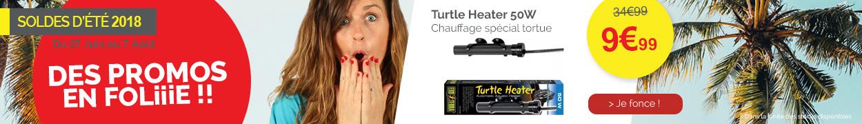 Turtle Heater 50W
