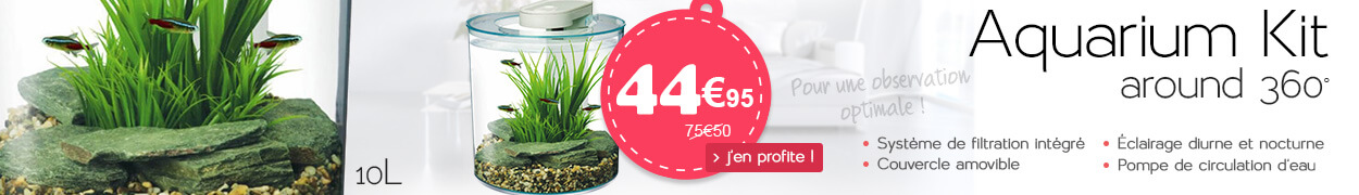 Aquarium Kit around 360°