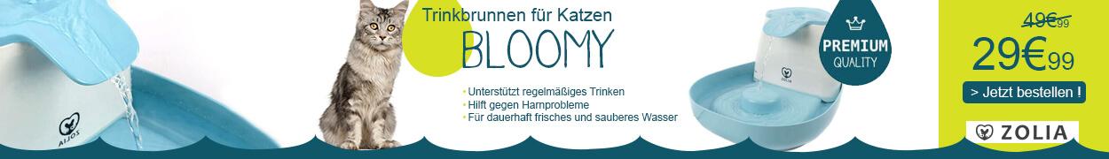 Fontaine Bloomy