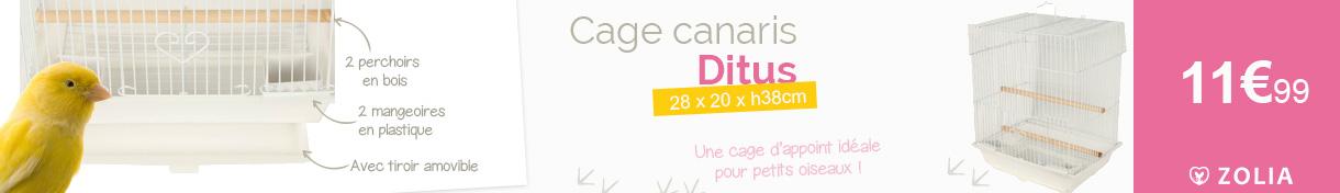 Cage ZOLIA Ditus