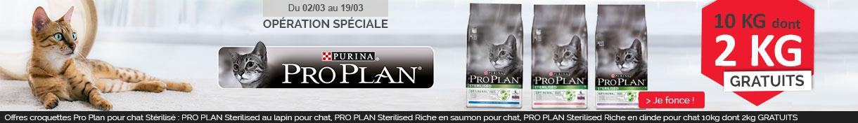 Offre Pro plan