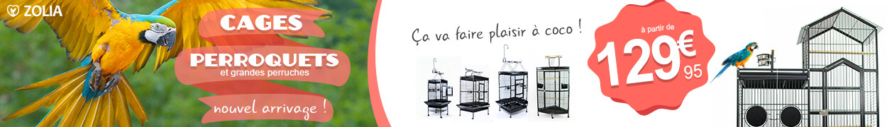 Cages perroquets et grandes perruches Zolia