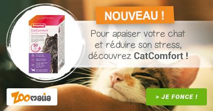 Avoir un chat serein c'est facile avec CatComfort
