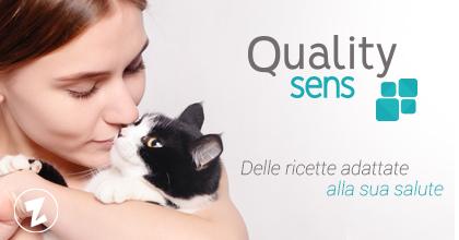 branding quality sens