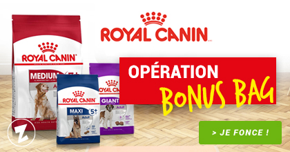 Bons plans Royal Canin