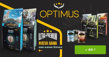 Gama Optimus