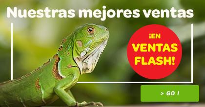 best sellers reptiles