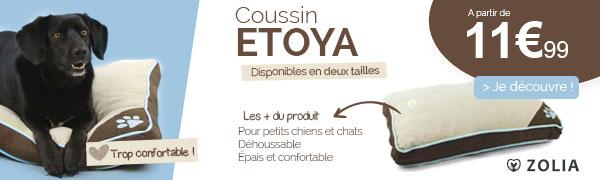 Coussin Etoya