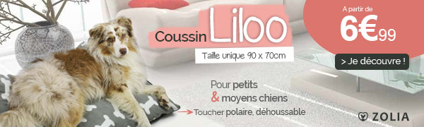 Coussin liloo